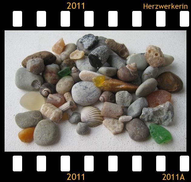 Gefundene Fossilien und andere bunte Schätze
