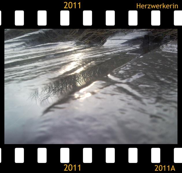 Eine Pfütze im Sand in der sich ein Baum spiegelt